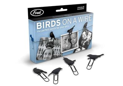 Teldeki Kuş Temalı Fotoğraf Mandalı - Thumbnail