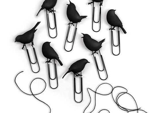 Teldeki Kuş Temalı Fotoğraf Mandalı